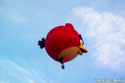 2014-07-27 NJ Balloon Festival -2945