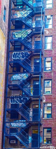 2014-08-10 NYC -3046