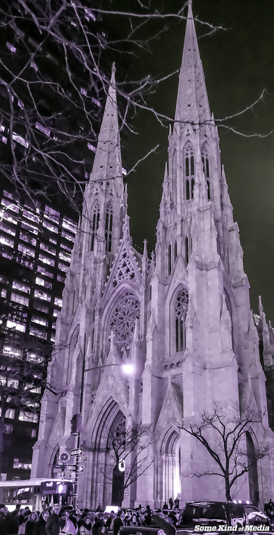 2014-12-18 NYC Christmas Tree -00664-9